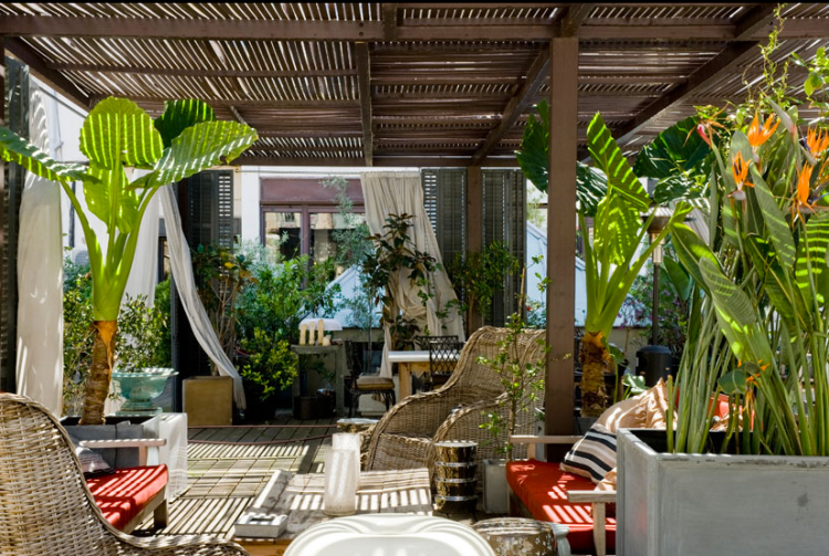 interior-exotic-patio-lazarosaviolan