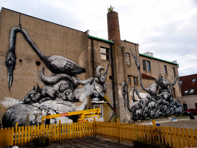 ROA photo by Kate Stcokman